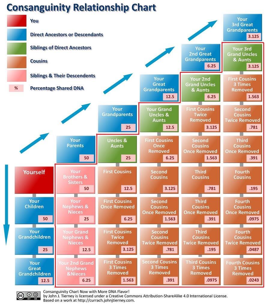 Genealogy Consanguinity & DNA