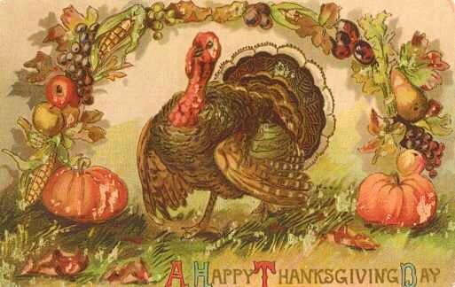 Happy Thanksgiving 🦃❣️