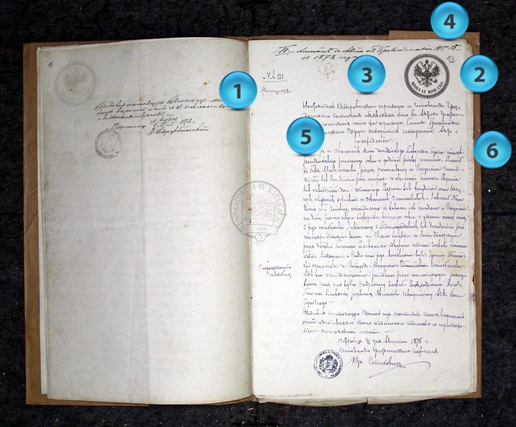 1878 Alegata dissected
